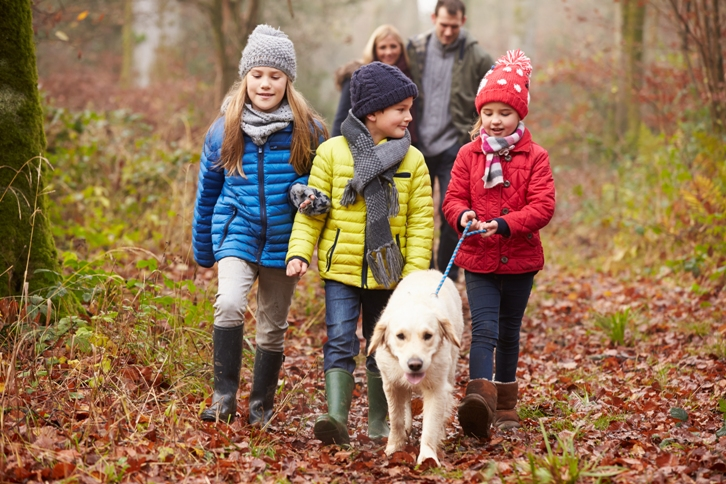 Family walking through the woods Ophthalmology jobs Online